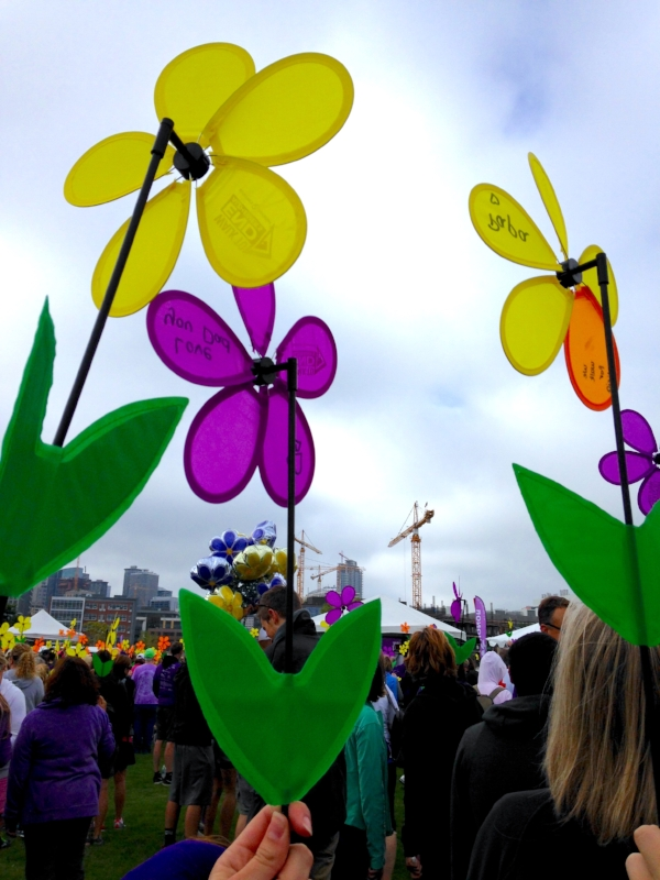 Promise Garden Flowers spin in the wind to showcase support for those with Alzheimer's.