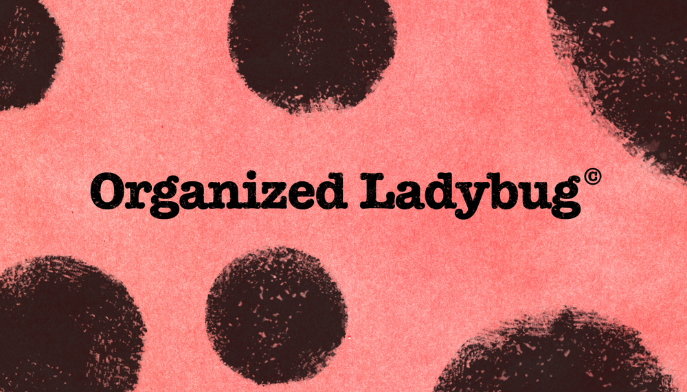 Organized Ladybug.jpg