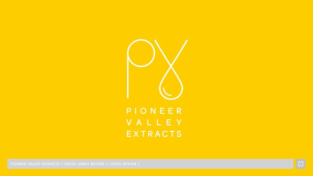PVx - BRAND DESIGN V3_Page_10.jpg
