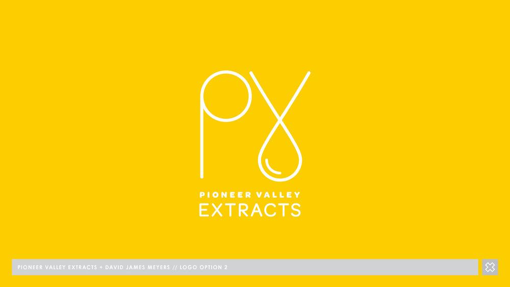 PVx - BRAND DESIGN V3_Page_13.jpg