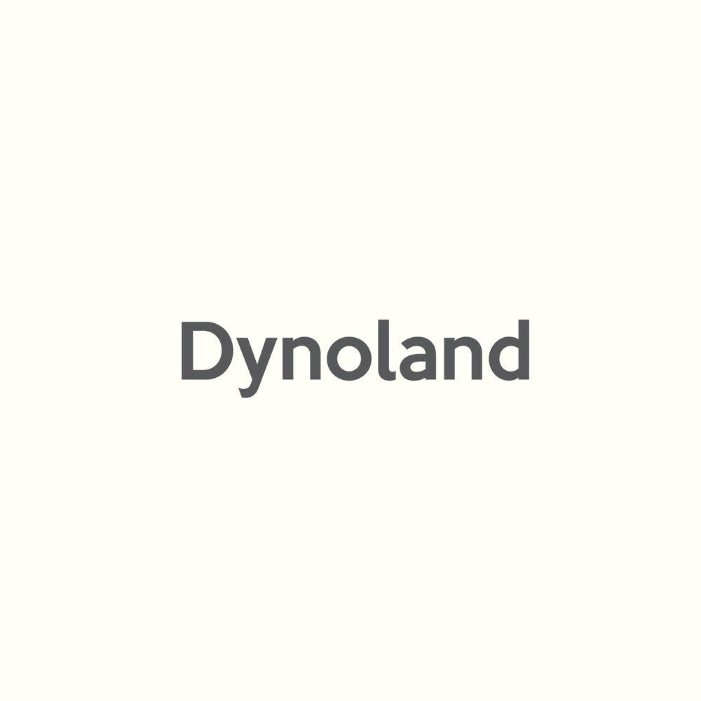 DYNO LOGO CONCEPTS - V112.jpg
