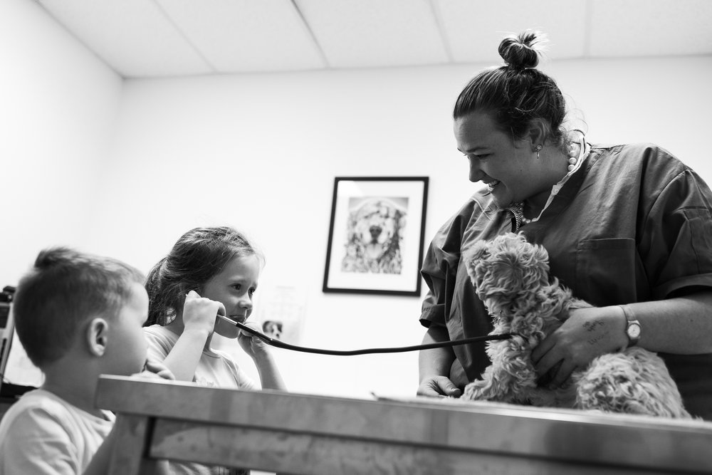 Dr Grace Butler with her namesake puppy. Ellie Green ( with stethoscope ) had wanted a puppy for two and a half years. Her parents, Dannielle and Al Green, bought her Belle several weeks earlier but, tragically, had to be euthanised shortly afterwards due to coccidiosis.  21 February, 2018.
