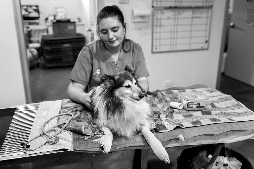 Trainee Nurse Claire Goodlock looks after Molly who is about to be discharged.  27 February, 2018.