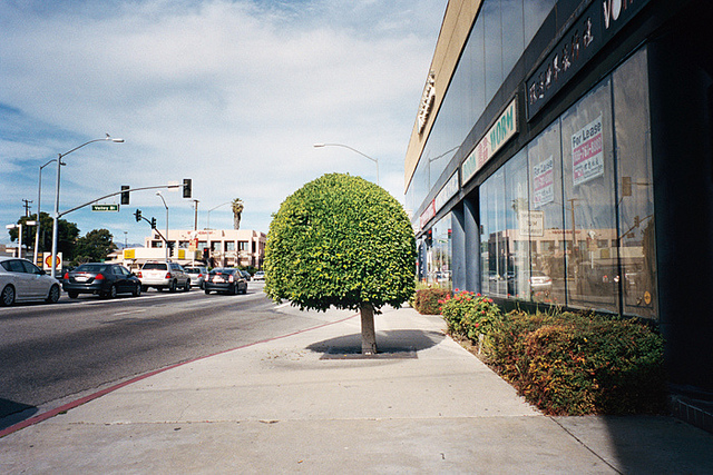 untitled  on Flickr.  Alhambra, Los Angeles. My old neighborhood. 2011