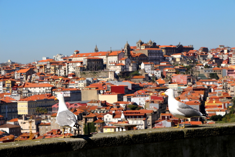24-2015-03-07 Oporto Portugal (107).jpg