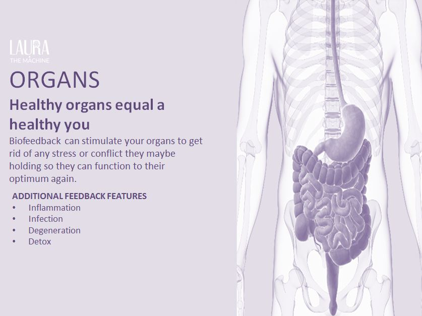 Organ Cover.jpg