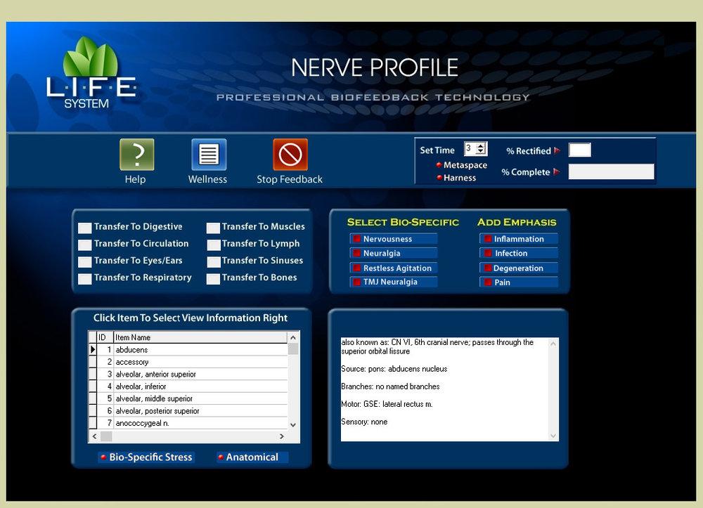 Nerve Profile.png