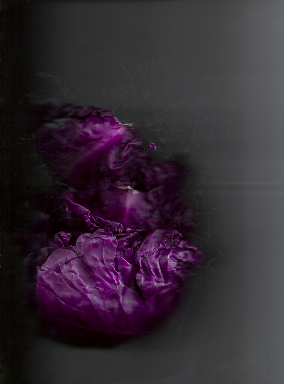 Chou violet 03.jpg