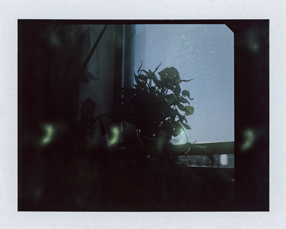 08-30-18 02.jpg