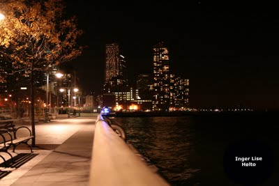 NYC+fall+by+night+11.9+003v.jpg