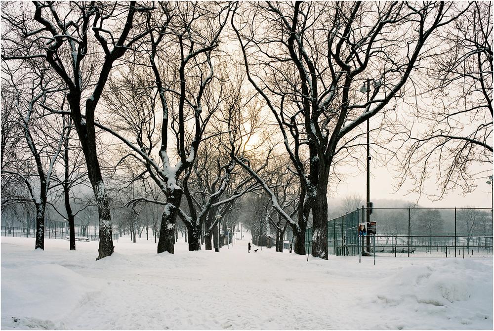 Parc Jeanne - Manc, Montreal