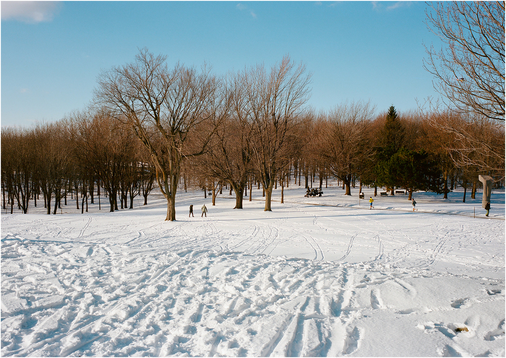 Mount Royal - Montreal