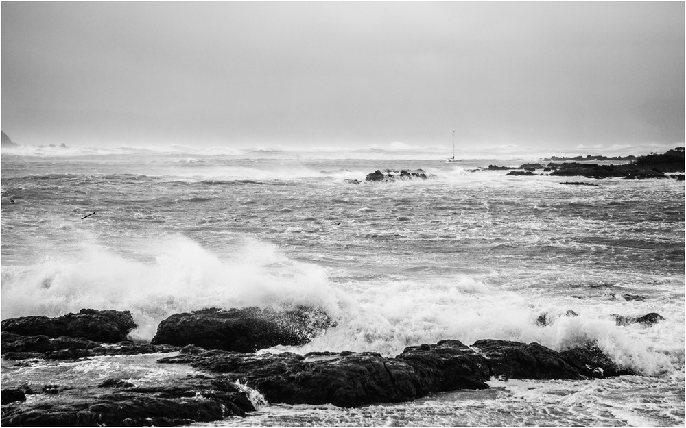 Storm, Island Bay - New Zealand