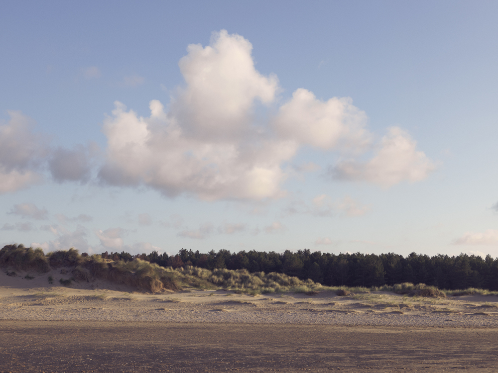 Norfolk Landscape - Photographed for part of the 'Live In Levi's' Campaign
