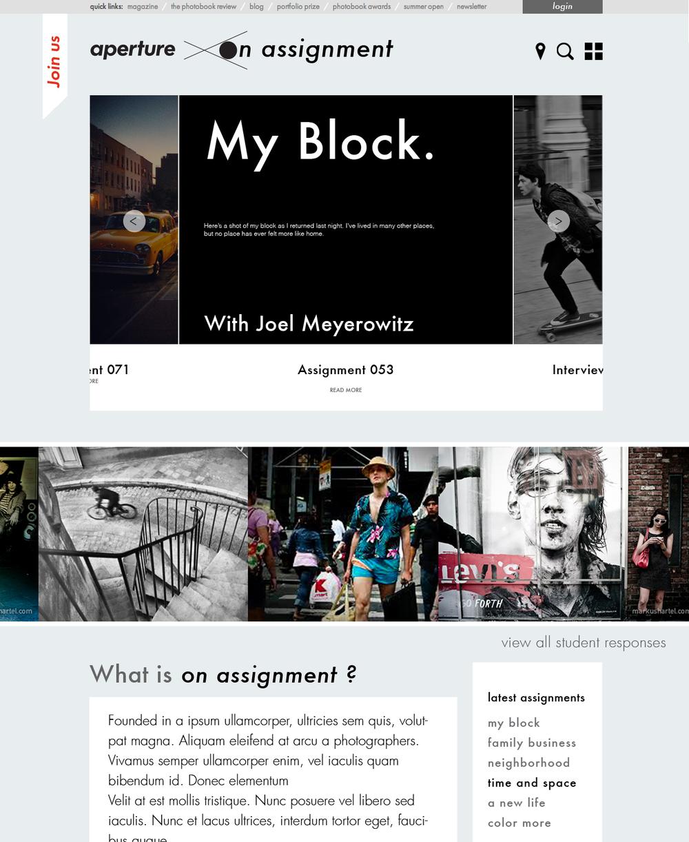 Aperture_Round 3_Homepage Mocks_Page_15.jpg