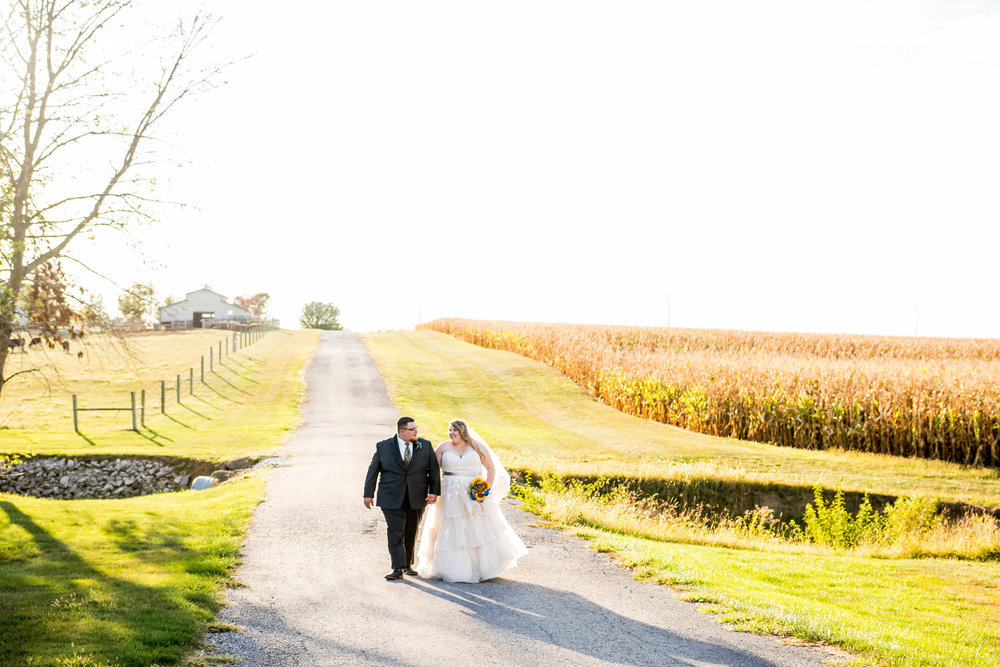 Indiana-wedding-photographer-reviews