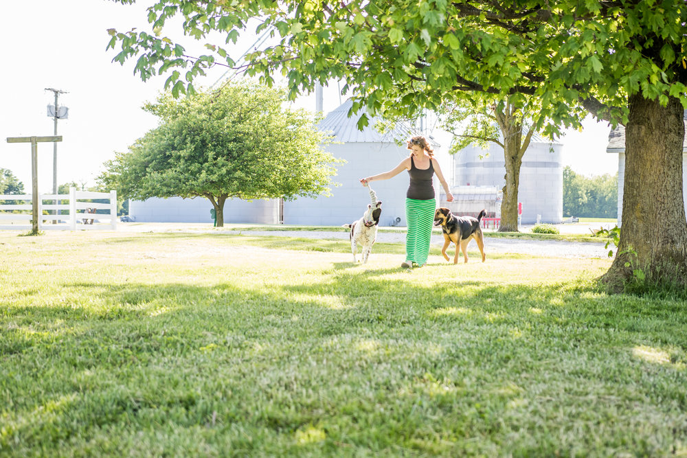 Indiana Pet Photographer - A