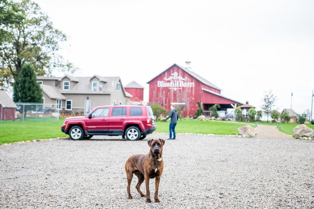 Blissful Barn Wedding Venue