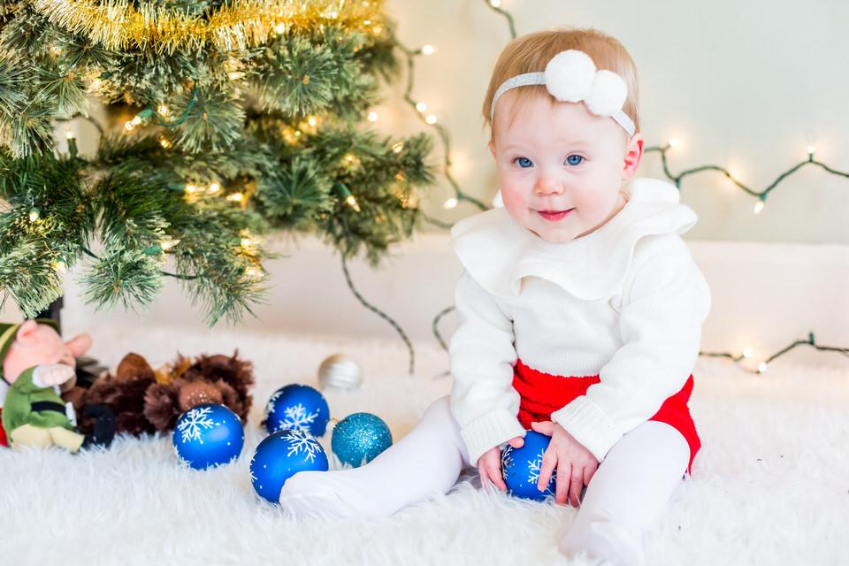 Holly_Christmas_Mini-1.jpg