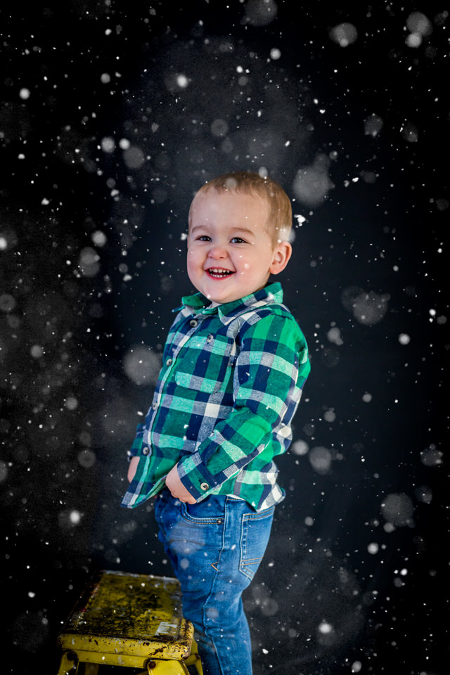 Holly_Christmas_Mini-41.jpg