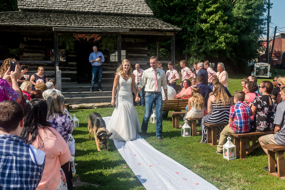 779Avon-Wedding-Country-Dogs.JPG