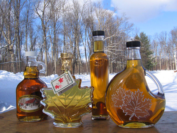 Image from the International Maple Syrup Institute