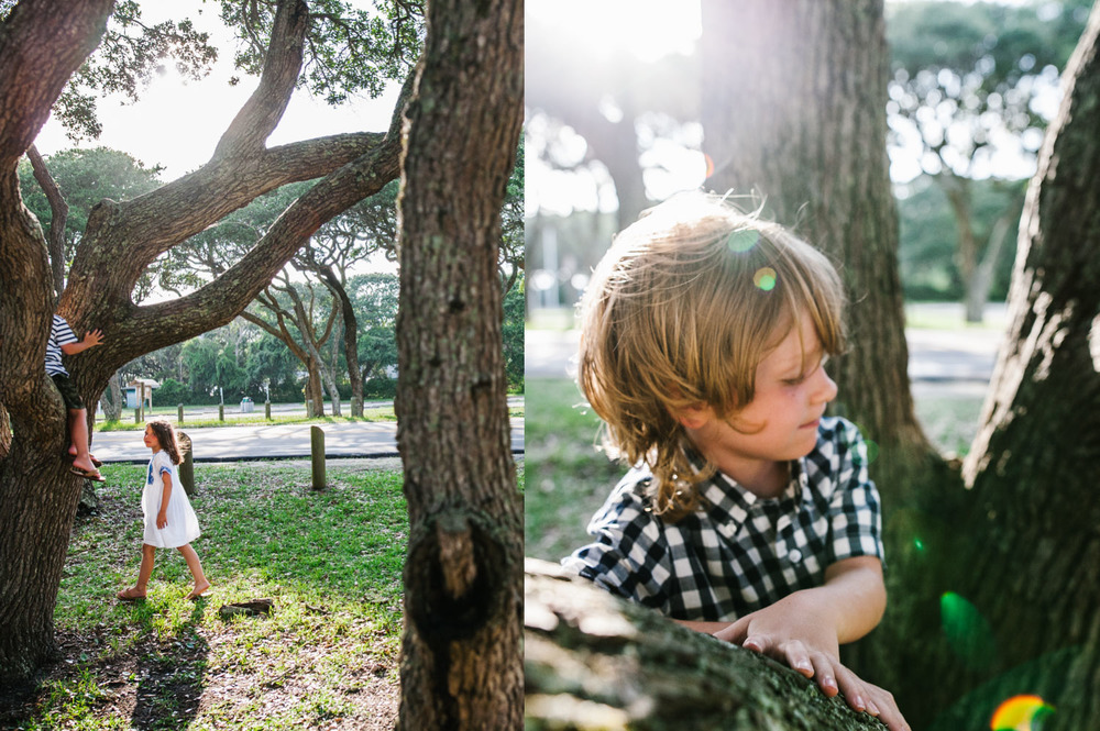 treesdiptych.jpg