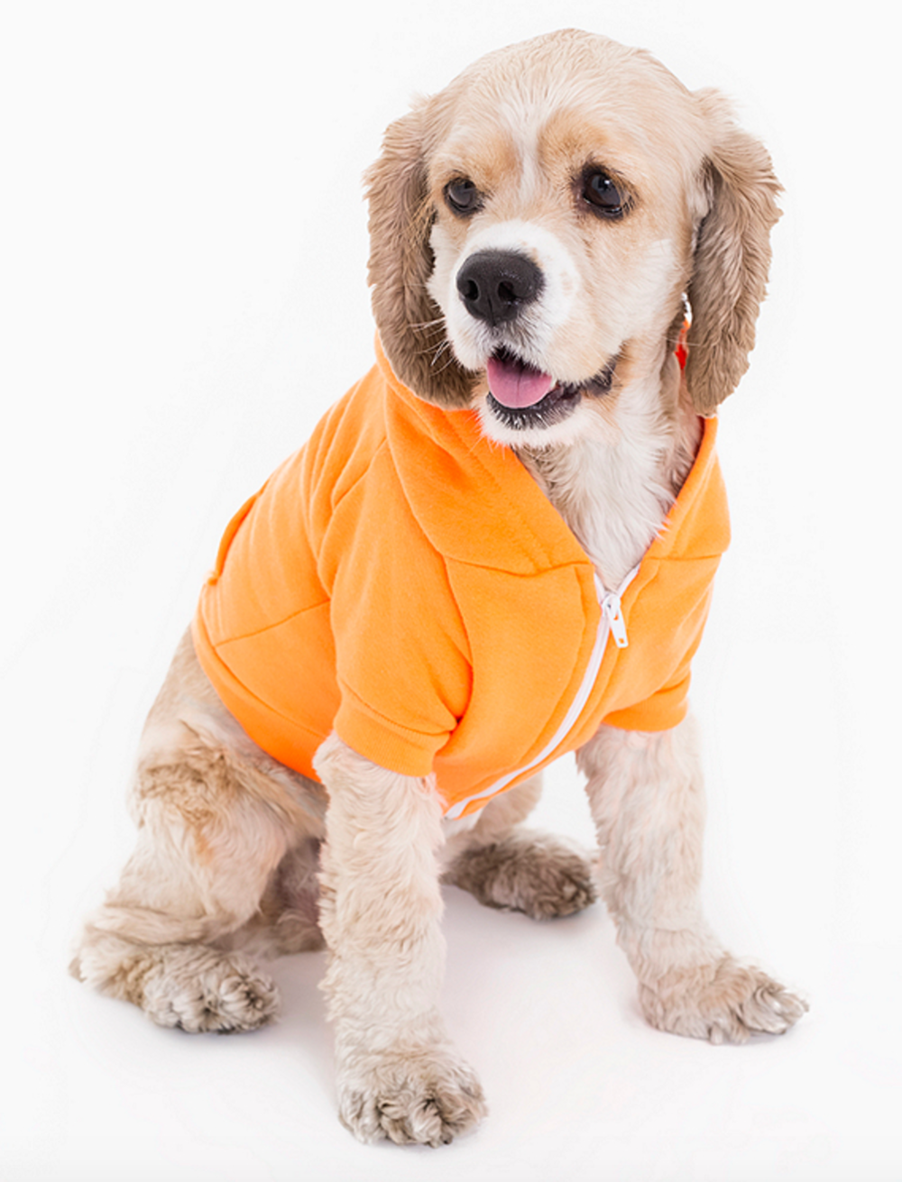 Flex Fleece Dog Zip Hoodie $17 / Their dog hoodies are to die for and make great gifts!