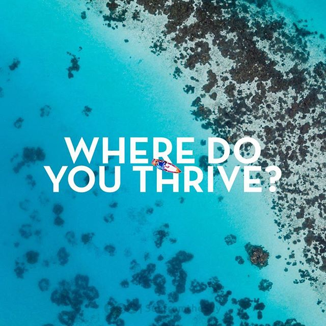 We want to hear from our community! Share where you thrive, tagging us @thrivecare and three friends. Use the hashtag #whereithrive and we'll feature our favorite on Sunday. A 50% coupon awaits this featured thriver! - - - - - - #thrivecare #giveaway #giveaways #freebies #adventure #travelgram #instagood #naturalskincare #skincare #whereithrive #owntheday #adventureawaits #optoutside #travelphotography #outdoors #outdoorphotography