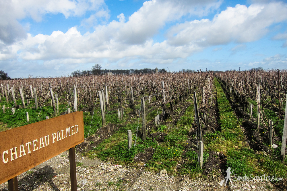 The vineyards of Château Palmer on a beautiful day in March