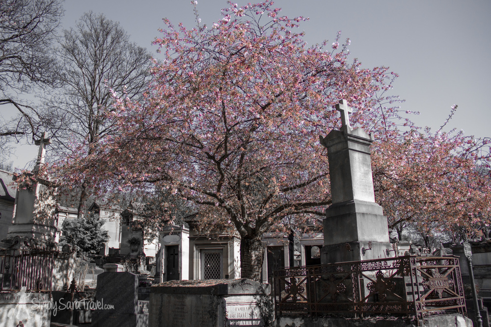 Spring at Père Lachaise