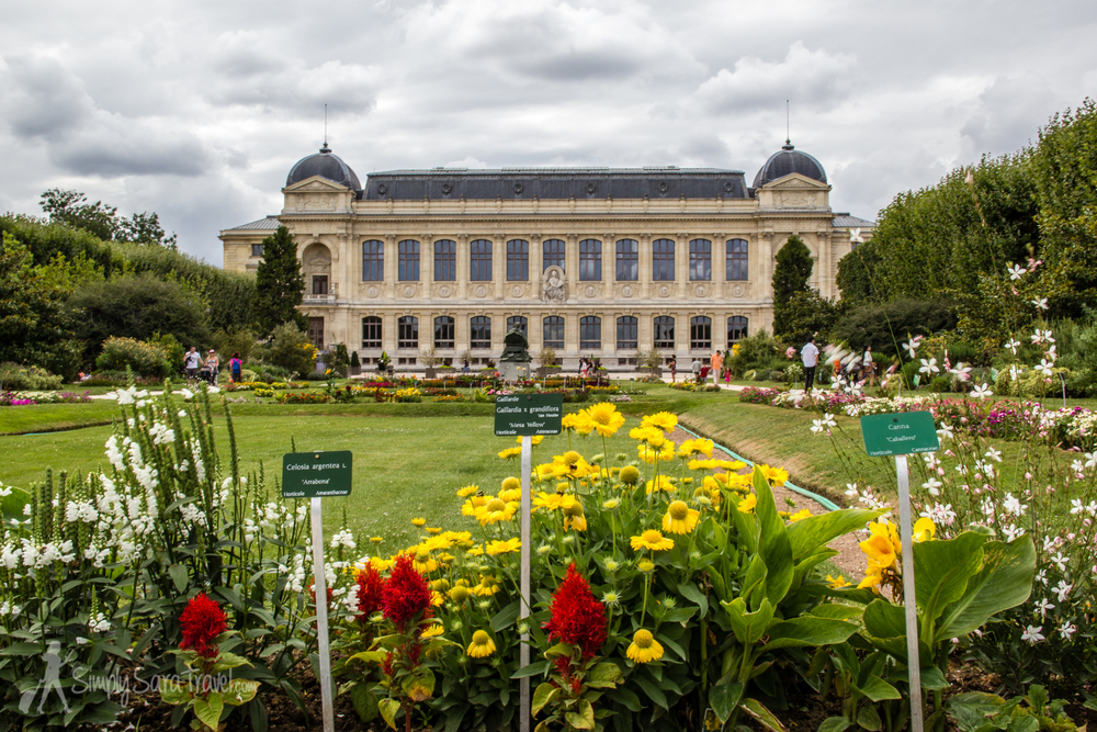 The jardin des plantes with the national museum of natural history in the background