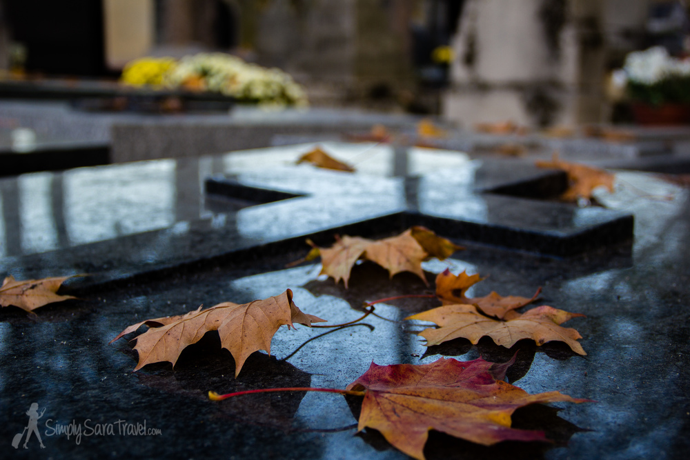 Leaves on Tomb at Cimetière du Montparnasse