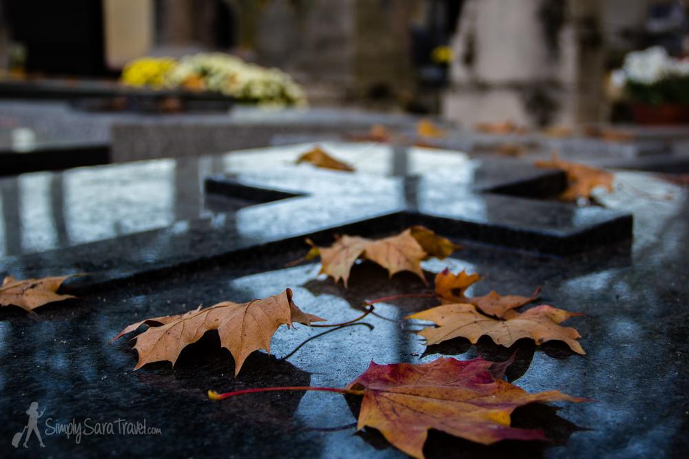 Leaves on Tomb at Cimetière du Montparnasse