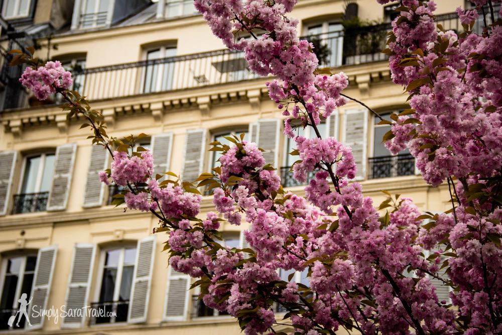 Spring in Paris at St Paul metro station, Marais, Paris