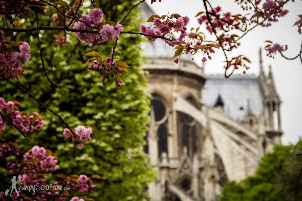 Back of Notre Dame in Paris, France at springtime