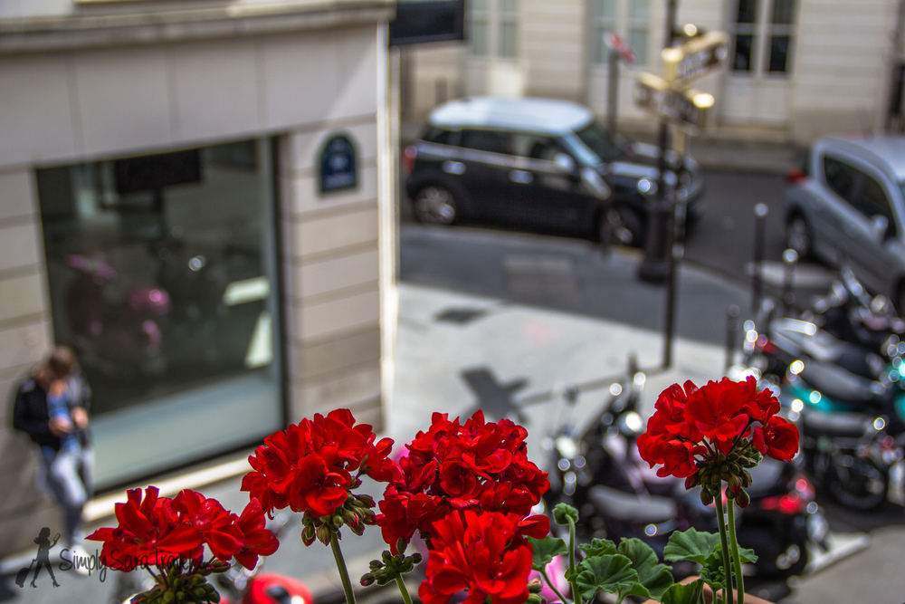 Apartment red flower box with a view of the Marais in Paris, France