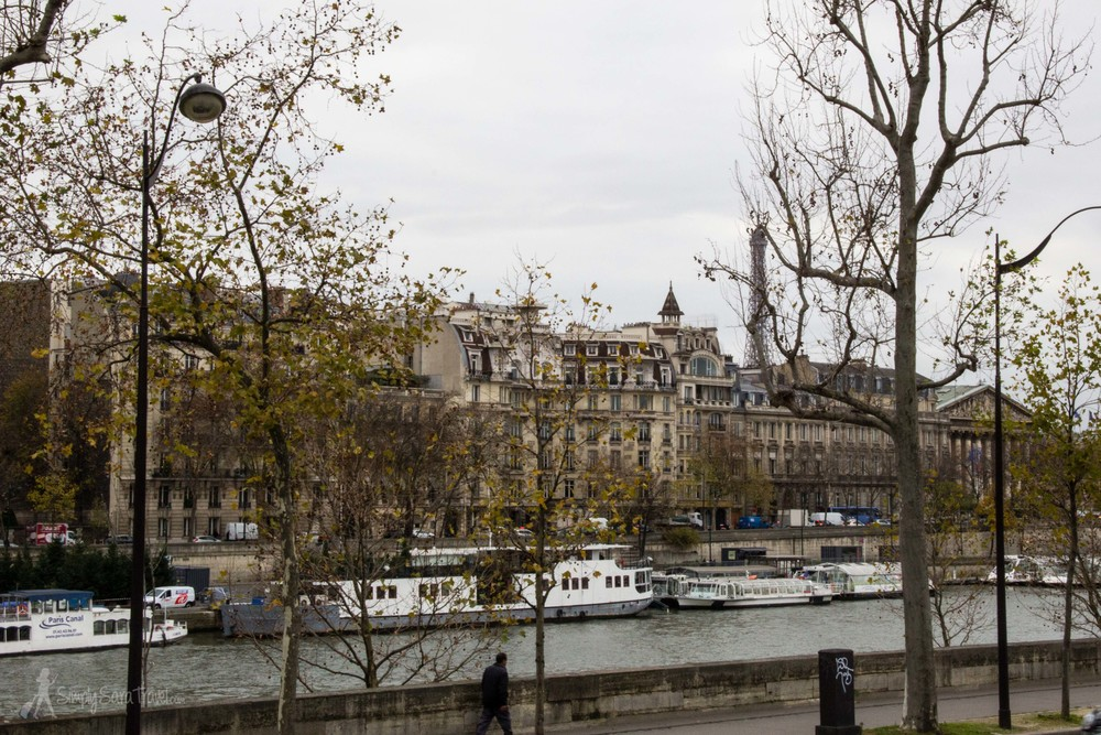 Winter in Paris with Eiffel Tower and Seine, France