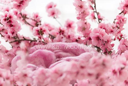 Nest Blossoms - Backlit.jpg