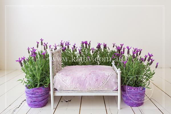 Garden Bed_01.jpg