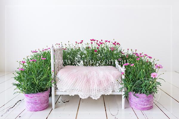 Garden Bed_03.jpg