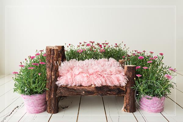 Garden Bed_11.jpg