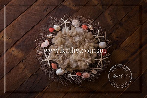Sea Shells_30.jpg