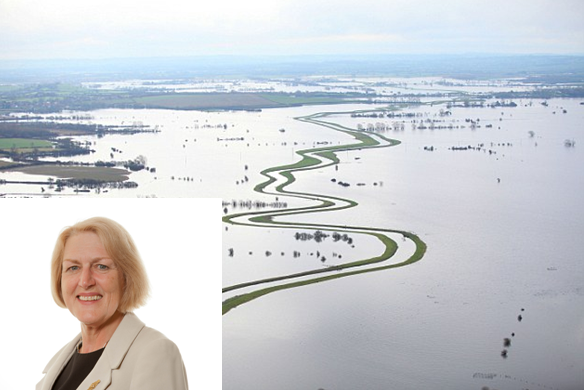 Well done Baroness Young, that's one hell of a bird sanctuary!