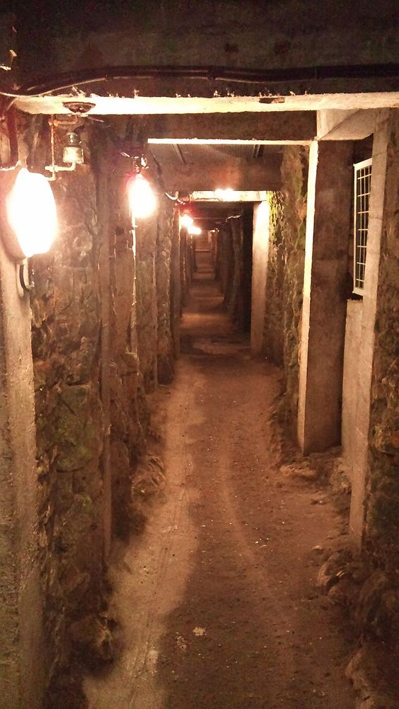 Preserved tunnel at Vimy Ridge