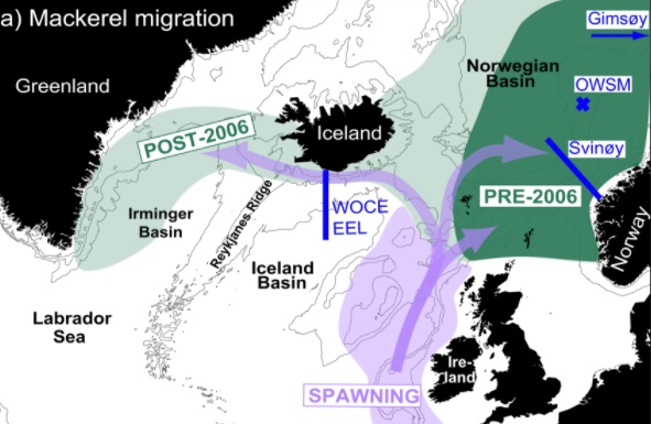 Mackerel spawning areas (purple shading) along the European shelf and the post-spawning and summer feeding migrations (purple arrows). The pre-2006 mackerel summer feeding areas are shown as dark green with the post-2006 expansion in light green - right where our young salmon head.