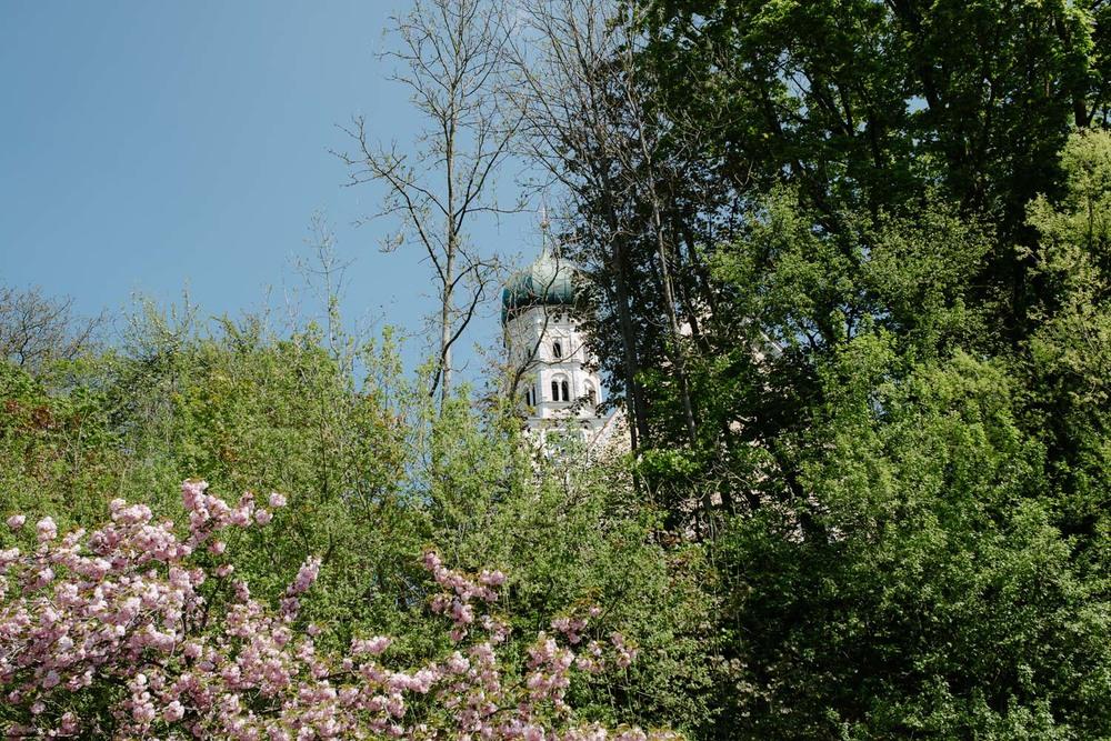 Bäume vor Kirche Detail kirchliche Trauung Hochzeit Rostocker Fotograf in Augsburg