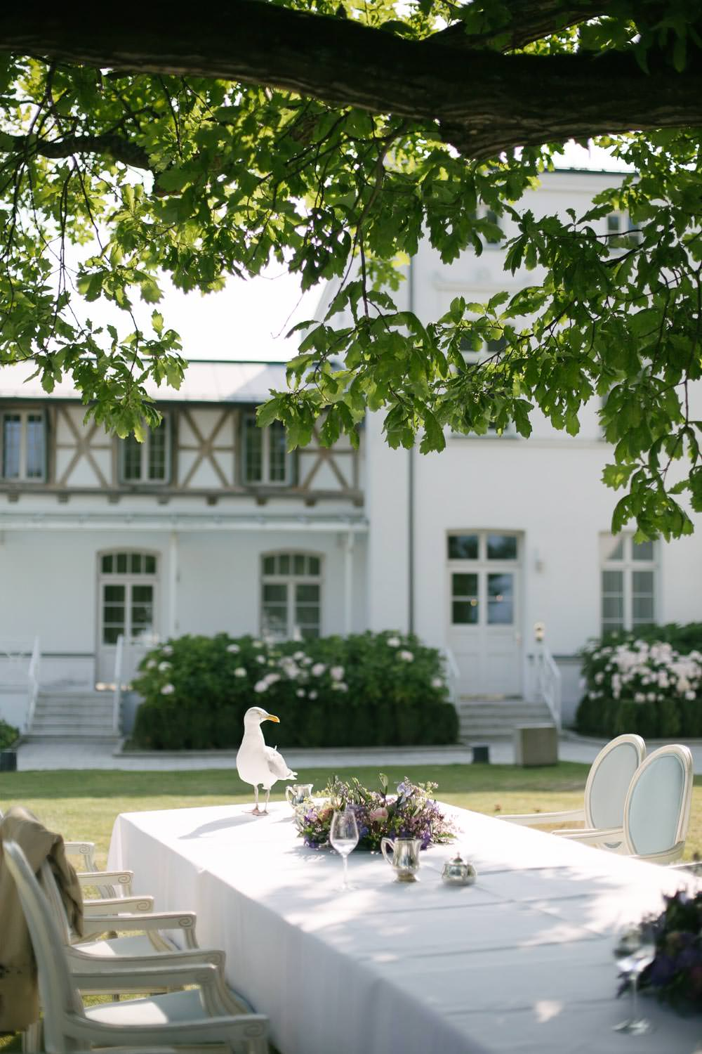Möwe Seagull Hochzeit Wedding Grand Hotel Heiligendamm