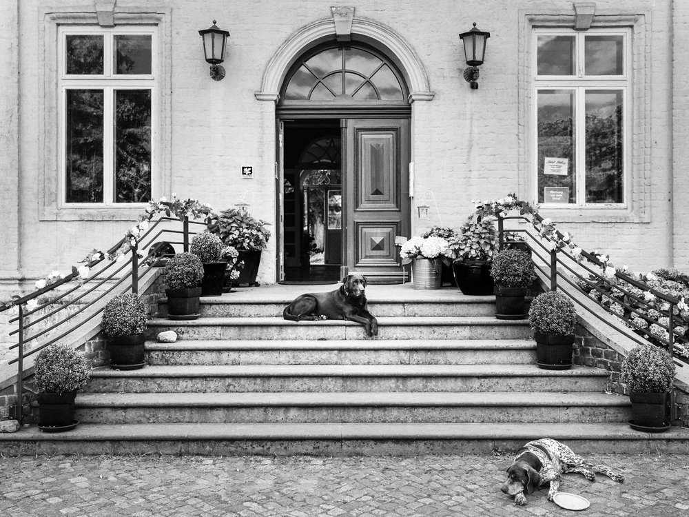 0003-Hochzeitsfotograf-Schloss-Lühburg.jpg