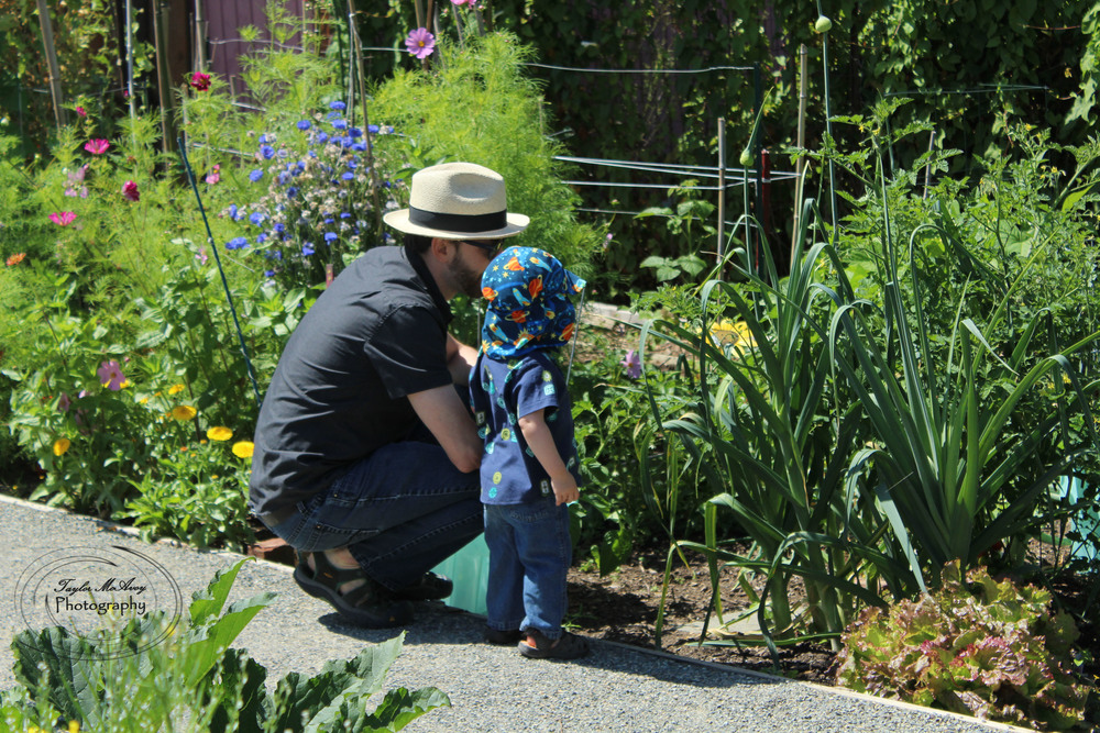 Jeremy Wadsack and his son admire the vast array of flowers, plants, and grasses in the gardens.